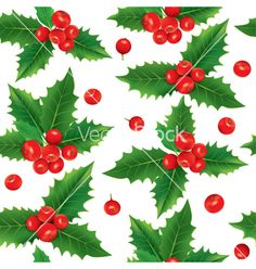 Seamless pattern of holly berries vector - by pinkcoala on VectorStock®