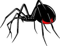 Image result for spider decal