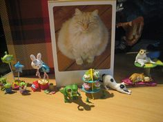 happy birthday to me! | Flickr - Photo Sharing!
