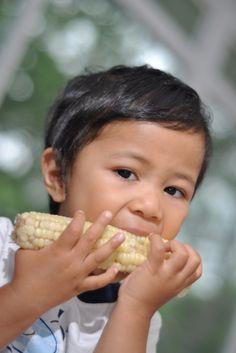 what are GMO's?!