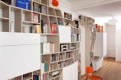 Interesting Storage Space for Books and Films: The Swollen Wall Apartment