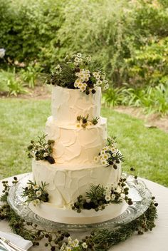 Green garden wedding cake.  Use lime green mini chrysanthemum instead of chamomile, and ripe black berries for the purple.