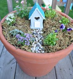 More small container fairy gardens (versus the various ones tucked in our yard)