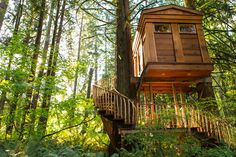 Treehouse hotels in the Northwest | ROGUE : MINX | Ethically produced. Oregon made. Adventure ready.