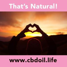See our latest news and research at www.cbdoil.life - CBD may be helpful in the fight against breast cancer~ Cannabinoids from non-psychoactive hemp, like CBD, can be of a huge benefit to human health and well-being.  Join the #natural #wellness #revolution @cbdhempoil    #women #health #alternative #wellness #inflammation #breastcancer #depression #healthy #home #mom #life #holistic #healing #essentialoils