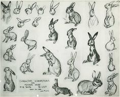 Model sheet by Marc Davis for Bambi. - Model sheet by Marc Davis for Bambi. Art Disney, Disney Concept Art, Bambi Disney, Disney Artists, Disney Pixar, Rabbit Drawing, Rabbit Art, Character Design Animation, Character Design References