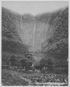 Hawaii Island: Both waterfalls in Waipi'o. One of them is Hi'ilawe.