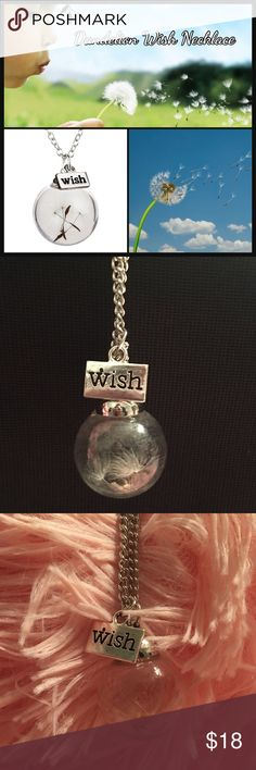 "Dandelion Wish Necklace Beautiful Glass globe pendant with dandelion inside. Metal slate with Wish dangles with the pendant. Chain is about 25"". New in package. Sooo fun and unique! Jewelry Necklaces"