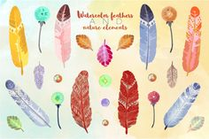 Watercolor Feathers by Bugcessories Design on Creative Market