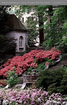 Winterthur Garden. We went in 1984, its beautiful.