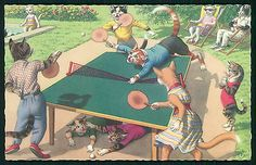 Belgian art Mainzer Table Tennis Dressed Cat Fantasy original 1950s postcard