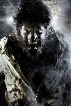 imagen de un hombre lobo    Este podría haber sido el nacimiento de la leyenda del hombre lobo ...