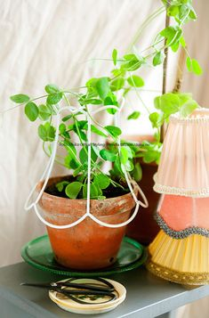 Diy plants - Nice way to upcycle a blah plant using the frame of a lampshade Potted Plants Patio, Indoor Plants, Flower Planters, Flower Pots, Front Porch Flowers, Flower Pot Design, Plants Are Friends, Green Life, Indoor Garden