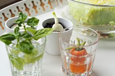 Tuhle zeleninu můžete pěstovat opakovaně doma v květináči. Jen ze zbytků! - Proženy Pesto, Cantaloupe, Stuffed Peppers, Vegetables, Fruit, Home, Canning, Stuffed Pepper, Vegetable Recipes