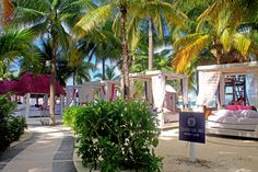 Everything is better at The Sian Ka'an Beach Club.🌊🍹 💎 The Sian Ka'an at Sens Cancún Lost Paradise, Paradise On Earth, Oasis, Beach Club, Romantic, Adults Only, Hotels, Romance Movies, Romantic Things