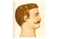 A great image of a man and his moustache, printed on fine art paper. Framed Art, Framed Prints, Medical Illustration, Antique Decor, Beard No Mustache, Religious Art, Vintage Photographs, Human Body, Cool Art