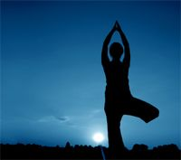 YOGA IN THE PARK  WHEN: Saturday, February 14, 2015, 7:15 – 8:15am COST: FREE BOOKINGS: Not required - For more information contact YogAdo on 0478 198 194 MEETING POINT: Shelter REQUIREMENTS: Mat or cushion, water. AGE10+ VENUE: Bracken Ridge Library VENUE ADDRESS: Corner Bracken and Barrett Streets, Bracken Ridge NOTE: Beginners to advanced with breathing techniques, stretching, strengthening, partner yoga, relaxation massaging, all in the great outdoors.