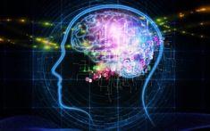 Ρεσβερατρόλη: Πού βρίσκεται η ουσία που «φρενάρει» το Αλτσχάιμερ.