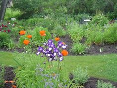 Garden Of Ede'n Gerald: More of the Garden of Ede'n Gerald (REPOSTED)