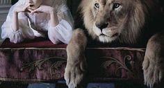 Lion or Tiger anyone? Tyra has leopard? Wren has polar bear? Amity has bird & Lyca is Wolf