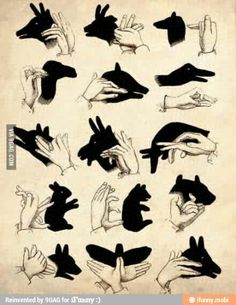 Shadow puppets :)