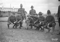 Army soldiers with a raccoon mascot in I am SO fascinated by WWI guys. An era beyond my imagining for valor and simplicity.