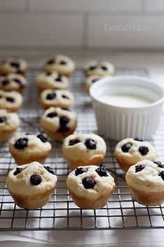 Whats better than pancakes? Bite sized mini pancakes that are full of blueberries in every bite! Mini Pancakes, Blueberry Pancakes, Mini Muffins, Pancake Bites, Mini Muffin Pan, Breakfast Recipes, Breakfast Ideas, Frozen Blueberries, Bread Rolls