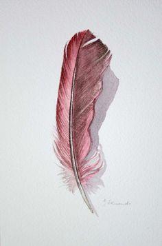 Cardinal Feather Study Original feather painting от jodyvanB