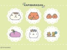 kapibara-san