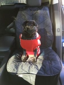 4Knines Luxury Car Seat Cover Review and Giveaway! Save your car from dog hair and mud! Open to CAN. Ends Jan.21/16 #sponsored