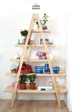 DIY ladder shelves aka cat tower if you put a hole, round or square, in each shelf to allow climbing...