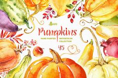 Pumpkins. Watercolor collection by OctopusArtis on @creativemarket