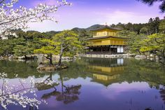 Kinkaku-ji – Cavan Flynn Drone Photography, Commercial Photography, Japan, Mansions, House Styles, Water, Outdoor, Home Decor