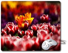 Computer Mouse Pad Mouse Mat Best Mousepad Photo Mouse Pad Nature Image flowers Photograph Laptop mouse pad Office Accessories Office gifts