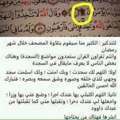 ماذا يقال في سجدة القرآن ؟!