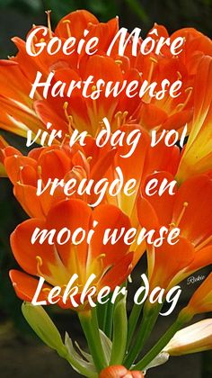 Lekker Dag, Angel Prayers, Goeie More, Afrikaans Quotes, Deep Thoughts, Good Morning, Wees, Advice, Neon Signs