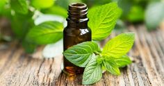Pain and Inflammation 10 drops each: wintergreen, eucalyptus, tea tree, rosemary  50ml of sweet almond oil
