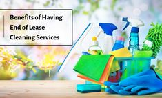 There are many benefits related to the end of lease cleaning in Adelaide that you will get from experienced and professional cleaners. You need to choose and search for the correct one. Professional Cleaners, Cleaning Service, Cleaning Solutions, Being A Landlord, Benefit, The Incredibles, Search, Pretty Cards, Searching