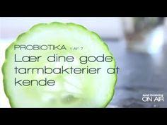 En film fra sund-forskning ON AIR, hvor du kan lære at kende dine tarmbakterier og vigtigheden af dem at kende. Film 1 ud af 7. Se dem alle på www.sund-forskningONAIR.dk