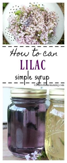 Easy recipe for canning lilac simple syrup for cocktails, flavored iced tea, flavoring kombucha, and more. Easy canning recipe for beginners.