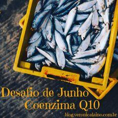 Desafio de Junho – Dia 26 – Coenzima Q10 | Nutrição, saúde e qualidade de vida