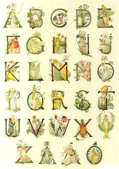 Blomsteralfabet - The Swedish flower alphabet Elsa Beskow, Children's Book Illustration, Illustrations, Abc Poster, Flower Alphabet, Alphabet Print, Image 3d, Flower Fairies, Illuminated Letters