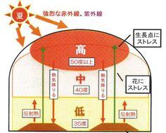高温・多湿対策|ビニールハウス専用無動力自動換気扇 空動扇