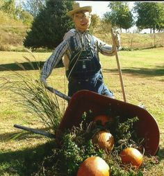 I decided we needed a fall decoration, so after the flowers died in the wheelbarrow I turned it into a scarecrow farmer spilling his load of pumpkins.