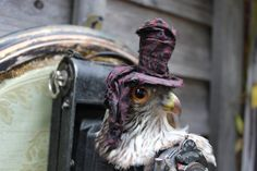Items similar to Watch The Birdy- Rogue-Taxidermy Assemblage by Rainey J Dillon on Etsy Faux Taxidermy, Rogues, Owl, Bird, Watch, Etsy, Animals, Animaux, Owls