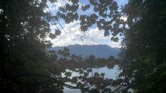 Mt. Baker framed by vine maple on on the East Bank Baker Lake Trail