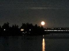 A summer moon