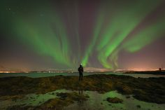 Photograph Have you seen Northern Lights? by Michele Fornaciari on 365 Day Calendar, Tromso, Days Of The Year, Have You Seen, Instagram Users, Northern Lights, Italy, Selfie, Portrait