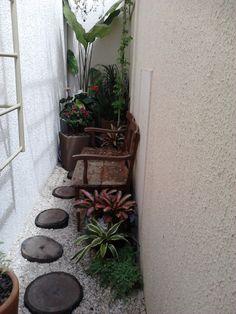 Meu jardim ta ficando lindo...