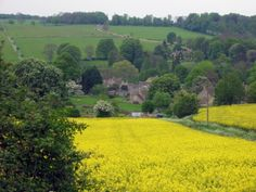 View of Upper Slaughter  ..We spent a long weekend in this little country village.